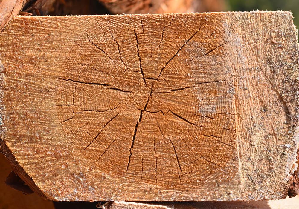 Pfosten - Bauholz Weißpriach