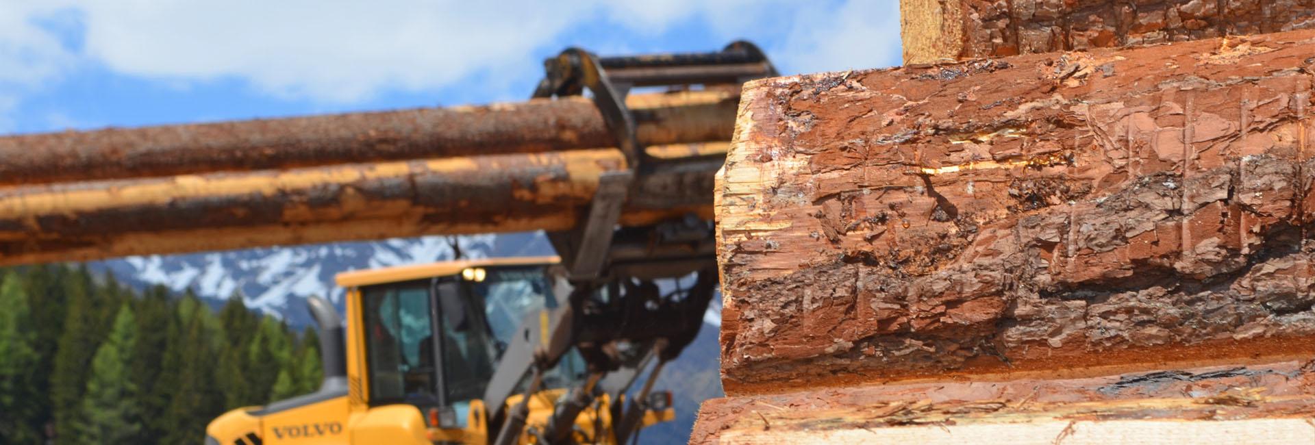 Holz Lungau Bogensperger