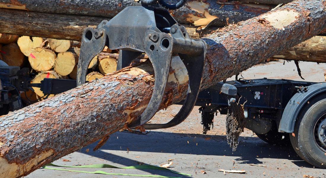 Holzfrächter Bogensperger Lungau